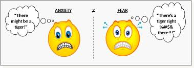 cemas vs fear