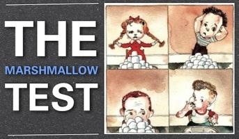 Marshmellow-Test