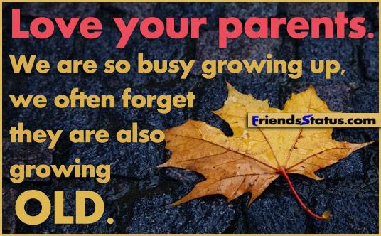Mengapa memberi perhatian pada  orangtua itu amalan istimewa? (catatan tentang life span development)